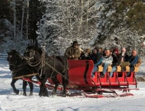 horse drawn sleigh ride through the snow